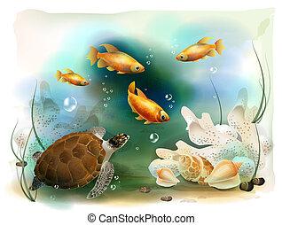 Illustration der tropischen Unterwasserwelt