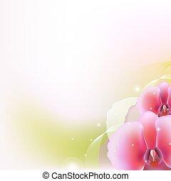 Illustration mit Orchidee