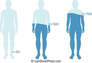 Infographic zeigt Wasserprozentsatz im menschlichen Körper. Vector Illustration Wasserbilanz.