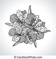 isolated., makro, blume, schwarz, orchidee