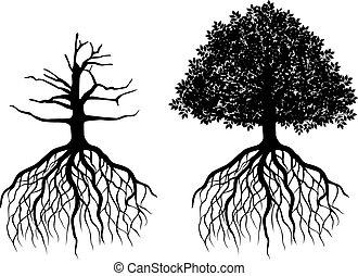 Isolierter Baum mit Wurzeln