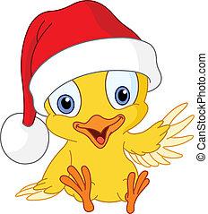 küken, weihnachten