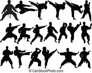 karate, groß, sammlung