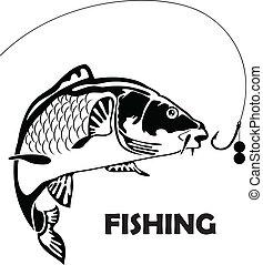 Karpfenfisch und Köder