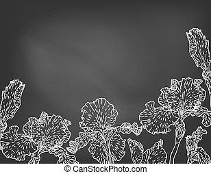 Karte mit hand gezeichneten Irisblumen auf Kreidetafel.