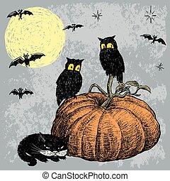 katz, nacht, eulen, halloween