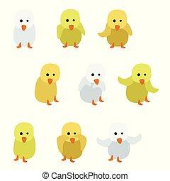 Kleine Hühner.