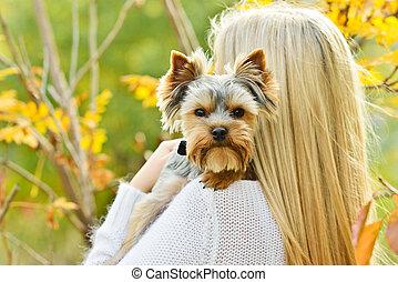 Kleiner Hund auf der Schulter.