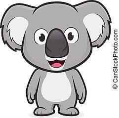 koala, stehende