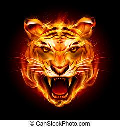 Kopf eines Tigers in Flammen