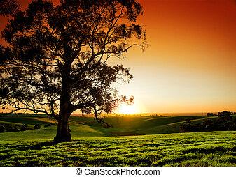Ländlicher Sonnenuntergang.