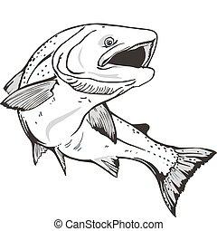 Lachsfisch