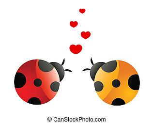 ladybirds, liebe, zwei