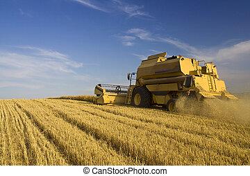 Landwirtschaft - kombinieren.