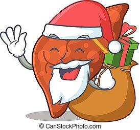 leber, fibrosis, santa, menschliche , geschenk, design, weihnachten, karikatur