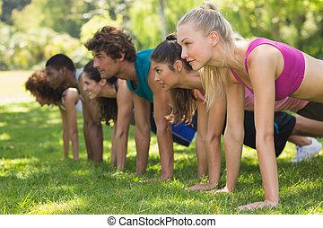 leute, park, schieben, gruppe, ups, fitness