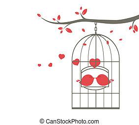 Liebesvögel im Käfig