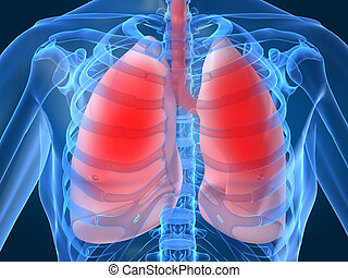 lunge, infektion