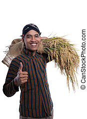 lurik, daumen, asiatisch, landwirt, ausstellung, auf