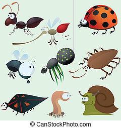 lustiges, insekt, satz