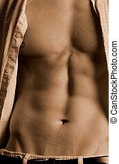 Männliche Bauchmuskeln