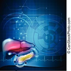 magen, organe, normal, kardiogramm, abstrakt, umgeben, andere, behandlung, hintergrund, gebiet, leber, gastrointestinal, design
