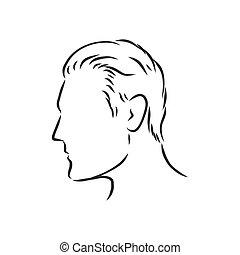 mann, abbildung, profil, grobdarstellung, head., menschliche , seite, vektor, skizze