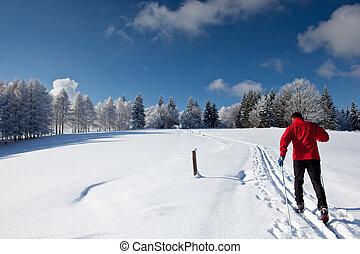 mann, ski fahrend, querfeldein, junger