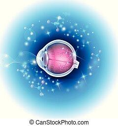 Menschliche Augenanatomie auf einem schönen abstrakten, leuchtenden Hintergrund.