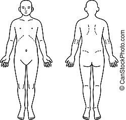 Menschlicher Körper vor und zurück