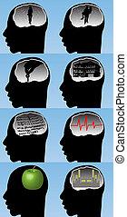 Menschliches Gehirn