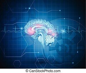 Menschliches Gehirnbehandlungskonzept