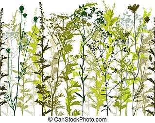 Natürliche wilde Pflanzen und Unkraut.