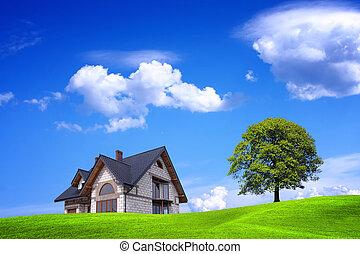 Neues Haus und grüne Umgebung