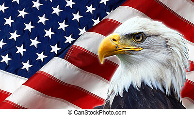 Nordamerikanischer Glatzkopfadler auf amerikanischer Flagge.