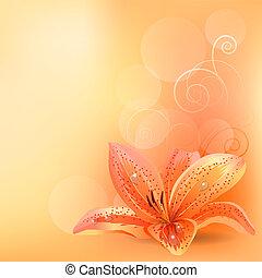 orange, pastell, lilie, hintergrund, licht
