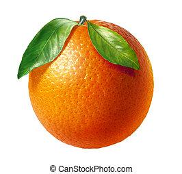 Orangenes frisches Obst mit zwei Blättern, auf weißem Hintergrund.