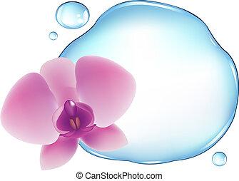 Orchidee über Wasser
