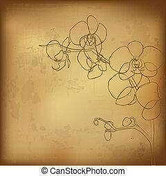 Orchidee und altes Papier