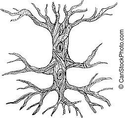 Ornate nackter Baumstamm mit Wurzeln