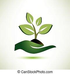 Palm- und Pflanzensymbol, Ökologie-Konzept.