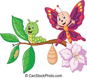 papillon, karikatur, metamorphose