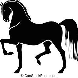 pferd, stolz, silhouette