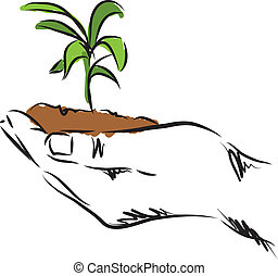 pflanze, hand, abbildung, hängender