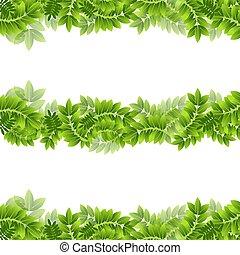 Pflanzenblatt Blätter grünes Rahmen-Grenzen Banner-Folien eingestellt.