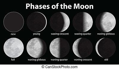 Phasen des Mondes.