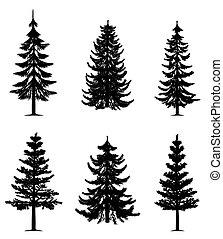 Pine-Bäume-Sammlung