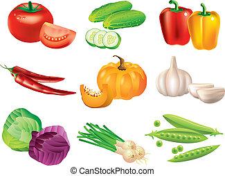Popular Gemüsevektor eingestellt