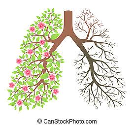 qualmende , krankheit, lungs., effekt, nach
