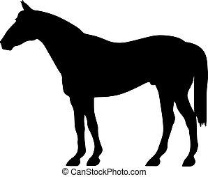 Rearing Horse Fine Vektor Silhouette und Umriss - anmutige schwarze Hengste.